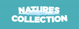 Natures Collection Soft Toys, Plush Toys, Stuffed Animals Singapore
