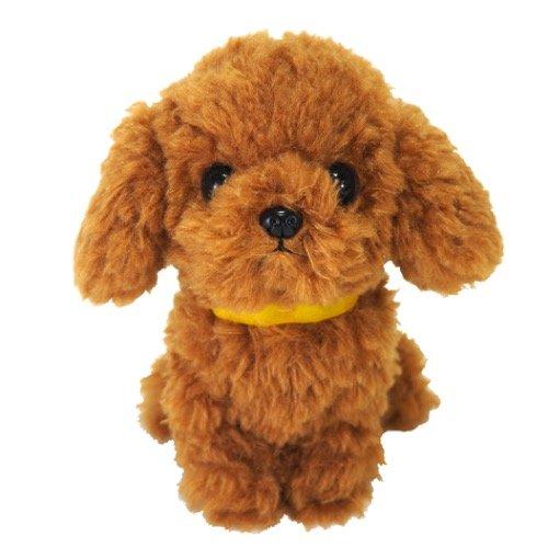 Sunlemon Pups Toy Poodle Brown